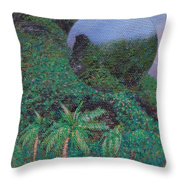 Details From On The North Shore Throw Pillow by Kenneth Grzesik