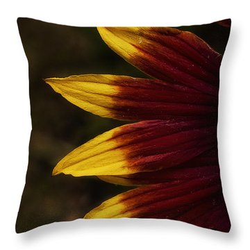 Details Of Spring Throw Pillow by Cris Hayes