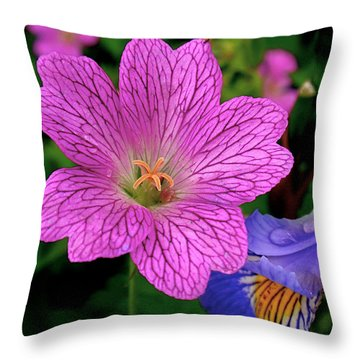 Details Throw Pillow by Rona Black