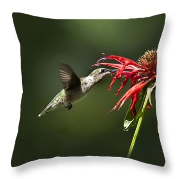 Determination Throw Pillow by Christina Rollo