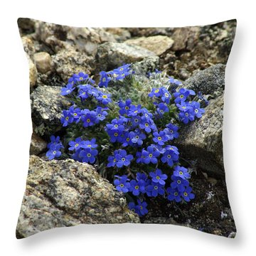 Throw Pillow featuring the photograph Determination by Jeremy Rhoades