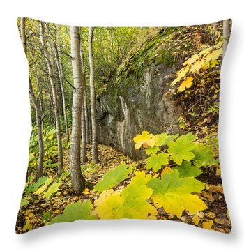Throw Pillow featuring the photograph Devil's Club In Autumn by Tim Newton