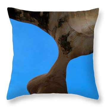 Devil's Garden-metate Arch 006 Throw Pillow