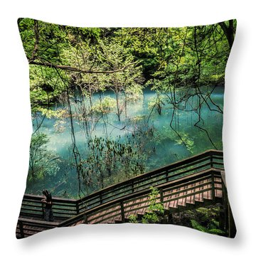 Devil's Millhopper Throw Pillow