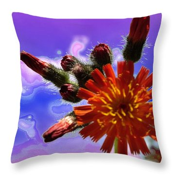 Devil's Paintbrush Throw Pillow