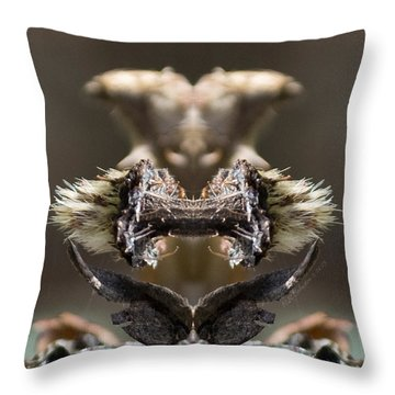 Throw Pillow featuring the photograph Devil's Squeezebox by WB Johnston