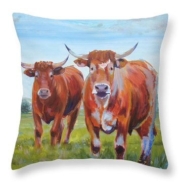 Devon Cattle Throw Pillow