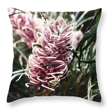 Dew Covered Grevillea Throw Pillow