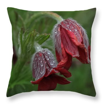 Dew Covered Pasque Flower Throw Pillow