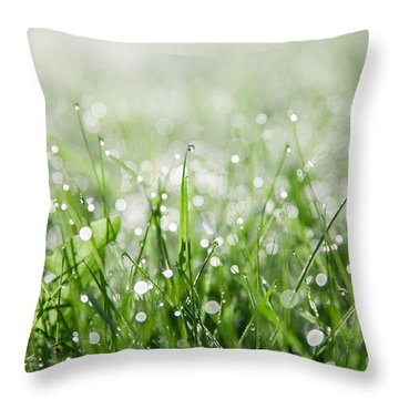 Dew Drenched Morning Throw Pillow