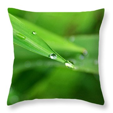 Throw Pillow featuring the photograph Dew Drop by Jean Haynes