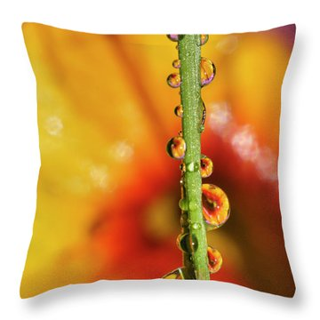 Dew Droplet Fractals Throw Pillow