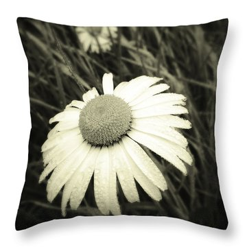 Dew Drops  Throw Pillow by Les Cunliffe