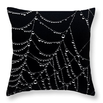 Dew Drops On Web 2 Throw Pillow