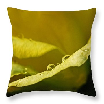 Throw Pillow featuring the pyrography Dew Drops On Yellow by Rebecca Davis