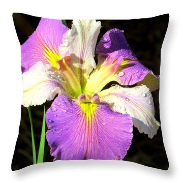 Throw Pillow featuring the photograph Dew On An Iris by Phyllis Beiser
