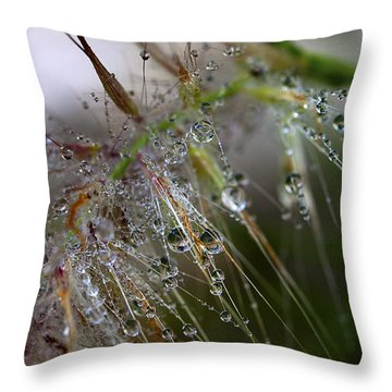Throw Pillow featuring the photograph Dew On Fountain Grass by Joe Schofield