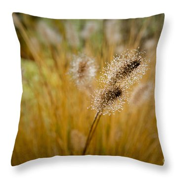 Dew On Ornamental Grass No. 4 Throw Pillow