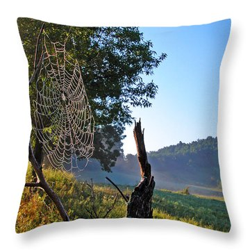 Dew On Spider Web Throw Pillow by Thomas R Fletcher