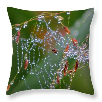 Dewdrop Inn Throw Pillow by Dianne Cowen
