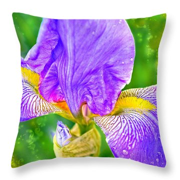 Throw Pillow featuring the photograph Dewey Iris by Adria Trail