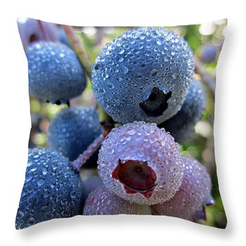 Dewy Blueberries Throw Pillow by MTBobbins Photography
