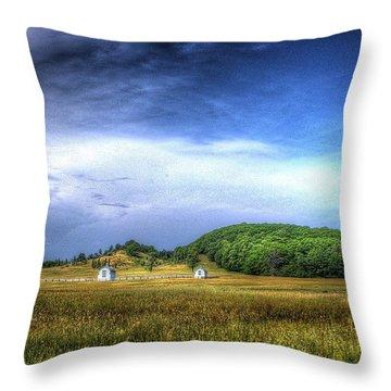 D. H. Day Farm Throw Pillow
