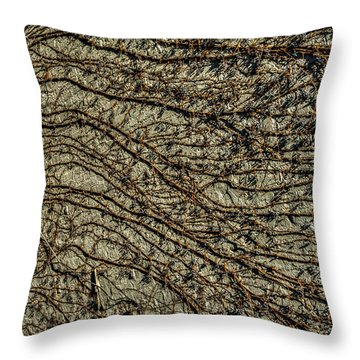 Throw Pillow featuring the photograph Di-vine Dish by Rafael Quirindongo