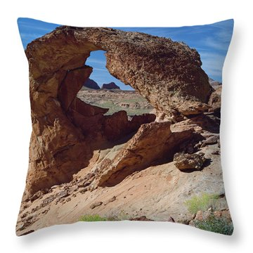 Diagenetic Arch-h Throw Pillow