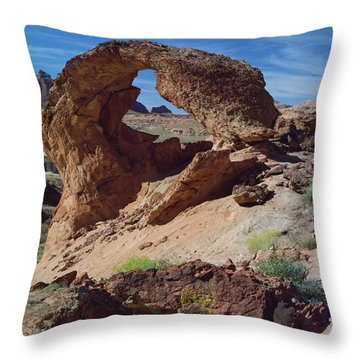 Diagenetic Arch-sq Throw Pillow