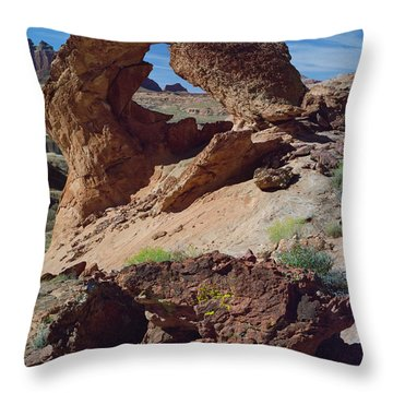Diagenetic Arch Throw Pillow