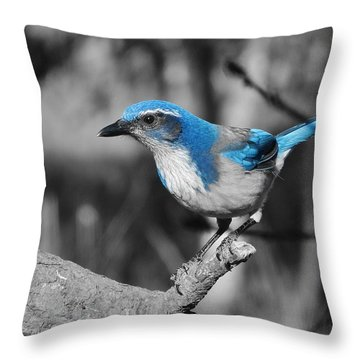 Dial Blue Throw Pillow by VLee Watson