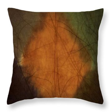 Throw Pillow featuring the digital art Diamond In The Rough  by Steven Richardson