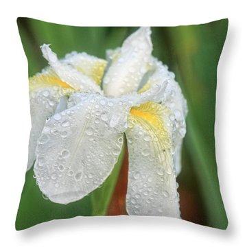 Diamonds Throw Pillow by Joan Bertucci