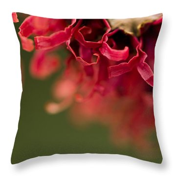 Diana The Hamamelis Throw Pillow by Anne Gilbert