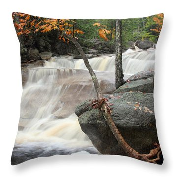 Diana's Bath Throw Pillow by Brett Pelletier