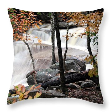 Diana's Bath Dad's View Throw Pillow by Brett Pelletier