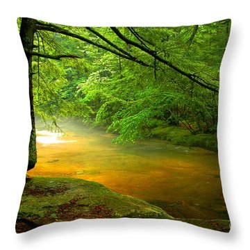Diana's Bath Stream Throw Pillow