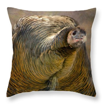 Did I Miss Thanksgiving?  Throw Pillow by Betty  Pauwels