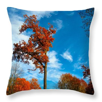 Throw Pillow featuring the photograph Loneliness by Zafer Gurel
