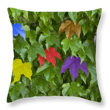 Different Yet The Same Throw Pillow