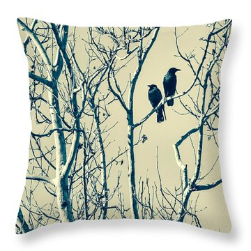 Differing Views Throw Pillow