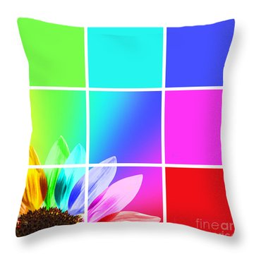 Diffraction Of Light Throw Pillow