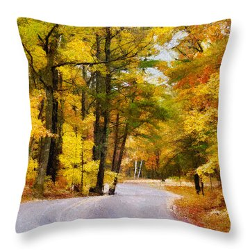 Throw Pillow featuring the photograph Fall Colors by David Perry Lawrence