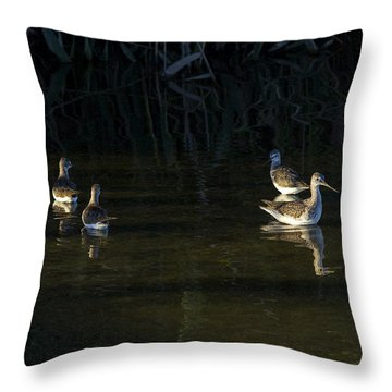 Digital Oil Of Sandpipers Throw Pillow