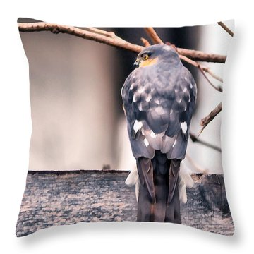 Digital Painting Of A Bird Of Prey  Throw Pillow