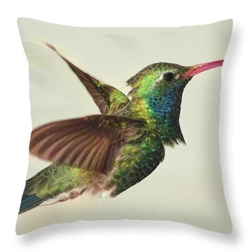 Digitially Modified Broadbilled Hummingbird Throw Pillow