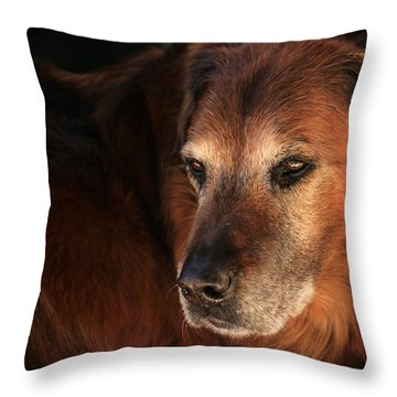 Dignified Throw Pillow