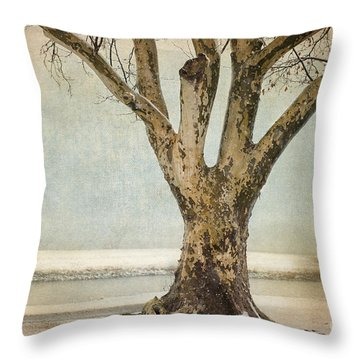 Dignity Throw Pillow by Betty LaRue