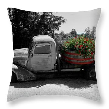 Dilapidated Beauty Bw Throw Pillow